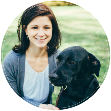 about dog training State College PA
